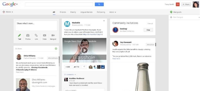 Google Plus, Google +