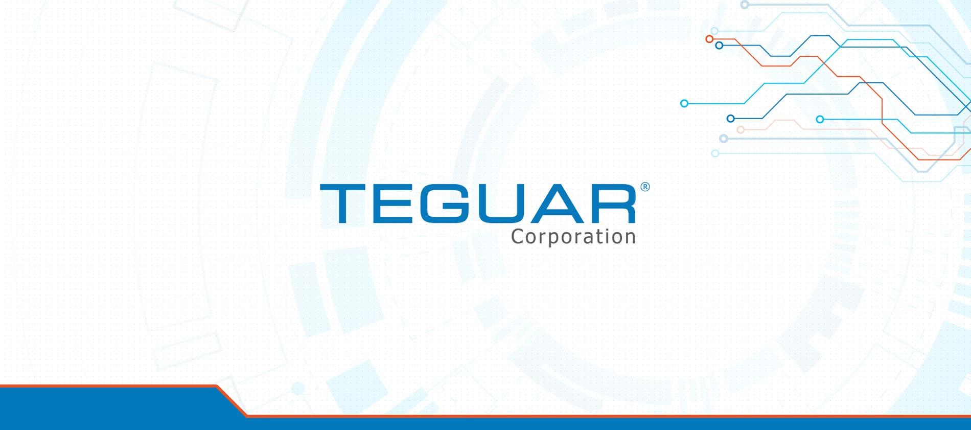 TA-teguar-portfolio-Banner