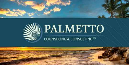 TA-portfolio-hero-images-palmetto
